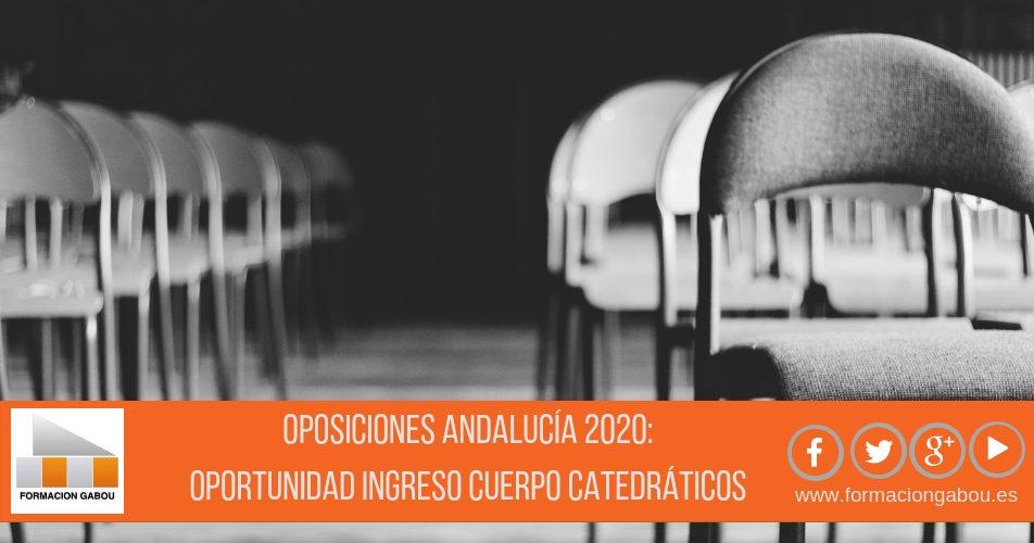 OPOSICIONES ANDALUCÍA 2020: Una gran oportunidad para ingresar en el cuerpo de Catedráticos de música
